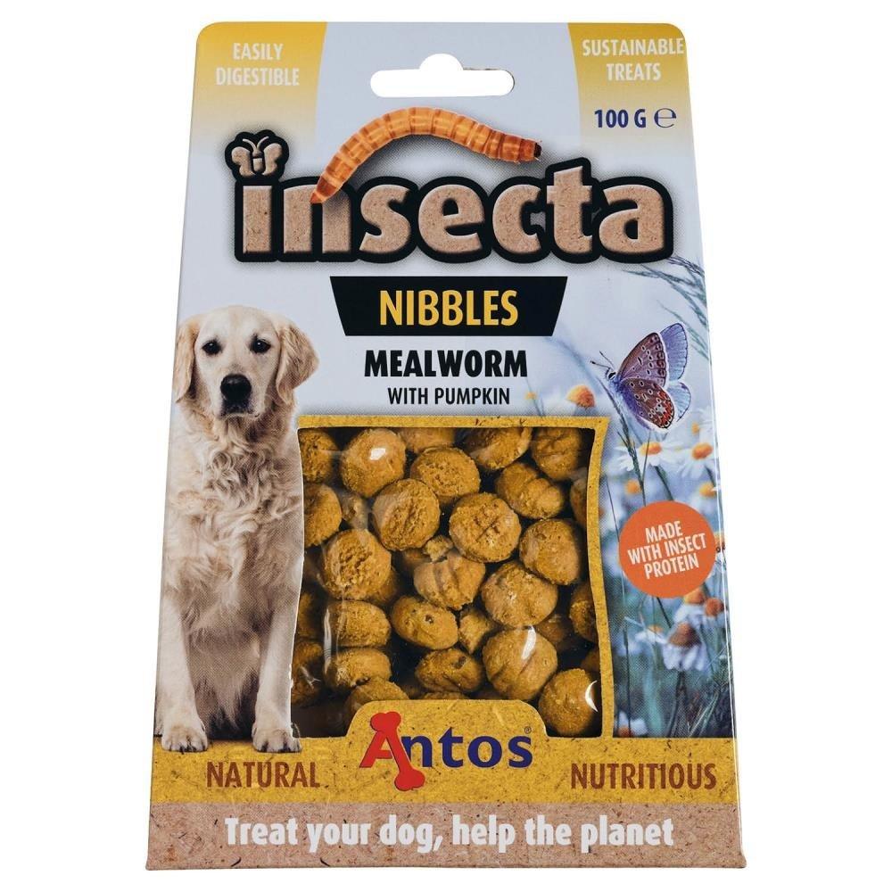 antos-insecta-nibbles-meelworm-en-pompoen
