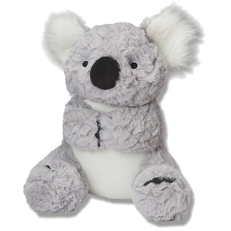 jack-and-vanilla-shizzlies-koala-1