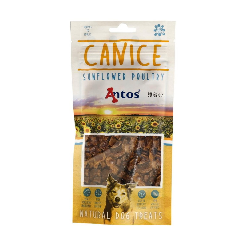 antos-canice-gevogelte